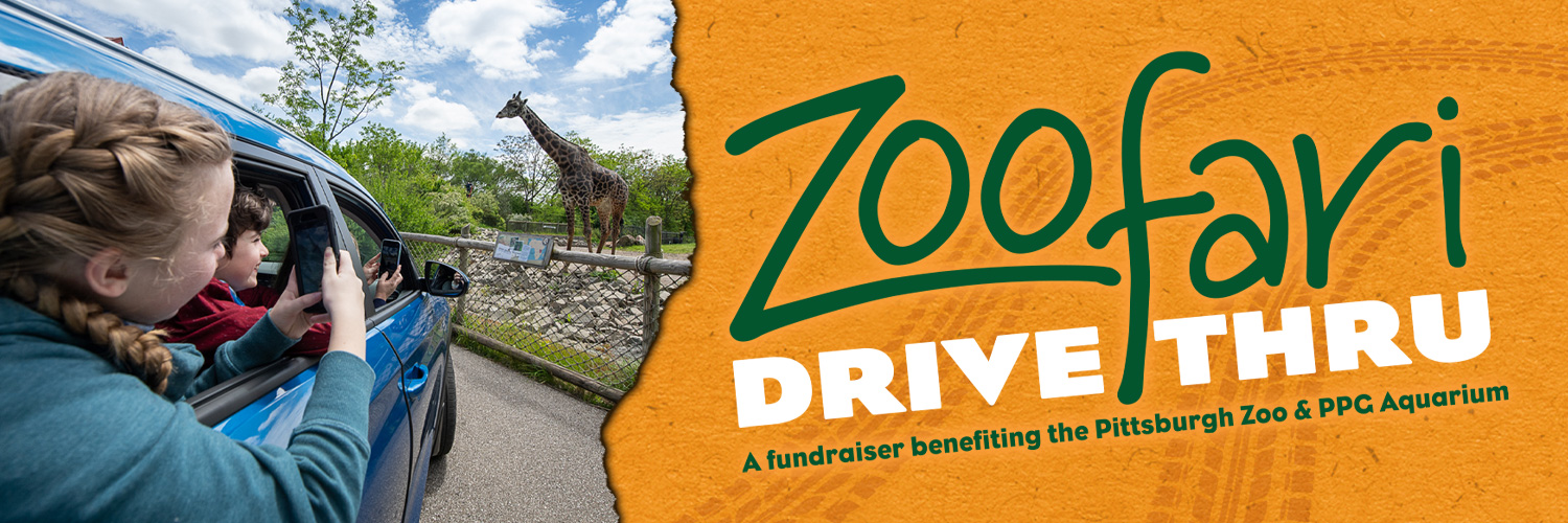 free admission to the pittsburgh zoo and aquarium october 7