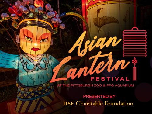asian lantern festival